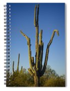 Weird Giant Saguaro Cactus With Blue Sky Spiral Notebook