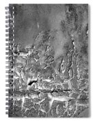 Well Weathered Spiral Notebook