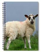 Wensleydale Lamb Spiral Notebook