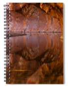 West Fork Illusion Spiral Notebook