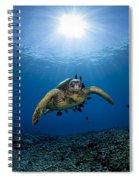 West Maui Sea Turtle Spiral Notebook
