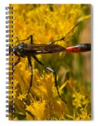 Western Gasteruption 2 Spiral Notebook