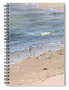 Western Sandpiper Spiral Notebook