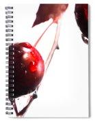 Wet And Wild Plum Spiral Notebook