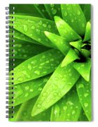 Wet Foliage Spiral Notebook