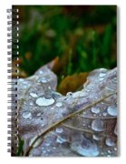 Wet Leaf Spiral Notebook