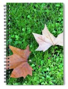 Wet Leaves On Grass Spiral Notebook