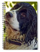 Wet Puppy Spiral Notebook