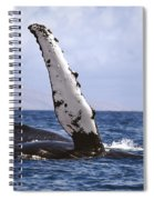 Whale Fin Above Water Spiral Notebook