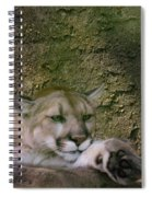What A Paw Spiral Notebook