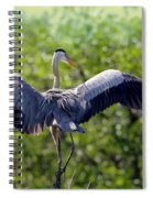 What A Wingspan Spiral Notebook