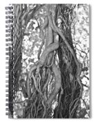 What Trees Know Spiral Notebook