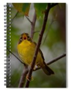 What Warblers Do Spiral Notebook