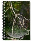 What Webs We Weave Spiral Notebook