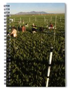 Wheat And Elevated Carbon Dioxide Spiral Notebook