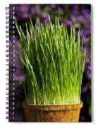 Wheat Grass Spiral Notebook