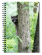 When Raccoon Dream Spiral Notebook