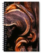 When The Oldest Living Things On Earth Die Spiral Notebook