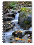 Whisketown Stream In Autumn Spiral Notebook