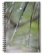 Whispers Of An Autumn Rain Spiral Notebook