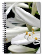 White Agapantha Spiral Notebook