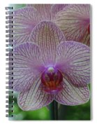 White And Pink Orchid Spiral Notebook