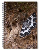 White-banded Black Moth Spiral Notebook