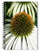 White Cones Spiral Notebook