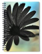 White Daisy Silhouette Spiral Notebook