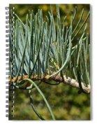White Fir Spiral Notebook