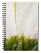 White Flower Head With Dew Spiral Notebook