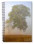 White Gum Dawn Spiral Notebook