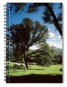 White Horse At Powerscourt, Co Wicklow Spiral Notebook