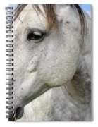 White Horse Closeup Spiral Notebook