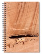 White House Ruins Spiral Notebook