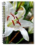 Mother's Day  Lilies  Spiral Notebook
