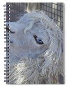 White Llama Spiral Notebook