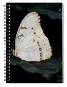 White Morpho Spiral Notebook