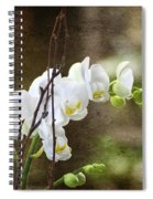 White Orchid Spiral Notebook