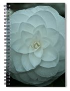 White Perfection Spiral Notebook