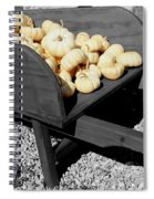 White Pumpkin Harvest Spiral Notebook