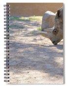 White Rhino And Ibex Spiral Notebook