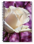 White Rose And Plum Blossoms Spiral Notebook