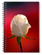 White Rose Red And Black Bg Spiral Notebook