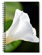 White Shadows Spiral Notebook