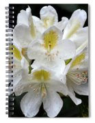 White Simplicity Spiral Notebook