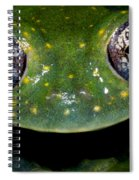 White Spotted Glass Frog Spiral Notebook