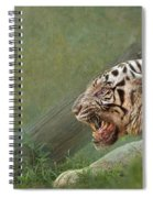 White Tiger Growling At Her Mate Spiral Notebook