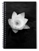 White Water-lily 3 Spiral Notebook
