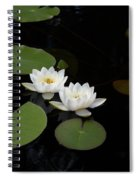 White Water-lily 4 Spiral Notebook